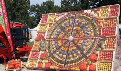alsace_fruits_vegetables_2019_strasbourg_eurofair_eurofora_400