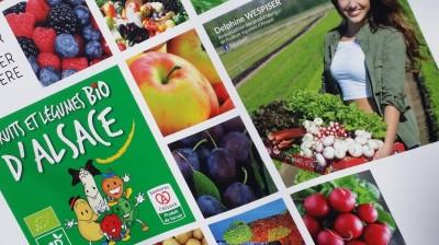alsaces_fruitsvegetables_and_miss_france_delphine_wespiser_eurofora_400