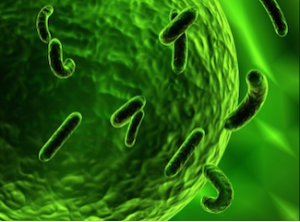 biowarfare_cell_attacked_by_virus