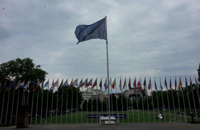 coe_big_flag_eurofora_400
