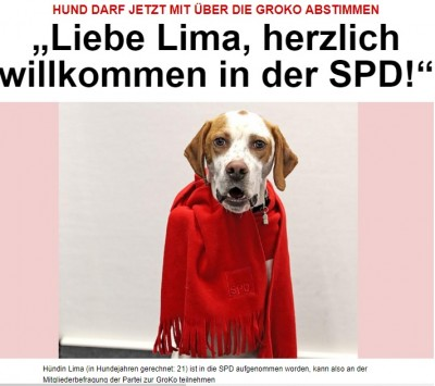 dog_lima_registered_as_spd_member_bild__eurofora_400