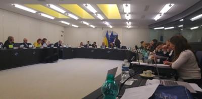 eu__ukraine_jpc_in_eu_parliament_eurofora_400