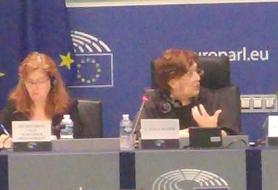 eu_parliaments_maghreb_committee_president_ayala_sender_eurofora_400