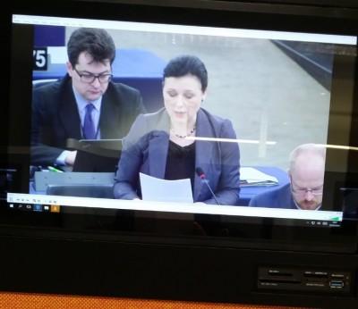 eucom_on_daphne_murder__comparisoncontsrast_eurofora_screenshot_in_pressroom_euparl_400_01
