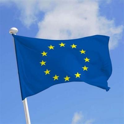euro_flag_400