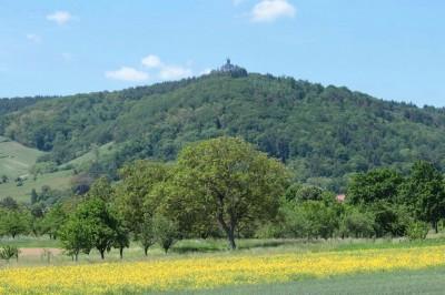 haut_koenigsburg_castle_in_alsatian_countryside_bracker__eurofora_400