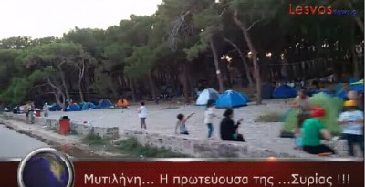 imi_lesvosnews_camping_at_seaside_forest_parc_free...._400