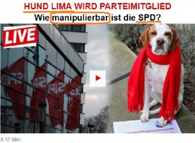 newspaper_bild_on_dog_lima_as_psd_member__manipulations_bildeurofora_screenshot_400