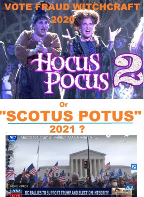 us_elec_fraud__hocus_pocus_or_scotus_potus_2021_walt_disney_movie__eurofora_patchwork_400_02